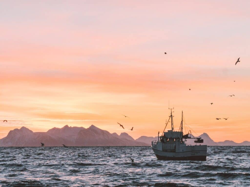 aprilvis vis vissersboot
