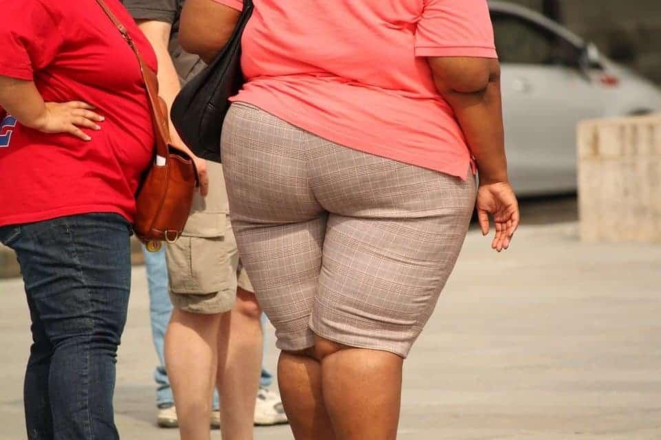 4 maart: Wereld Obesitas Dag. Restauranthouders kunnen nog veel leren over evenwichtige voeding - Horeca Webzine