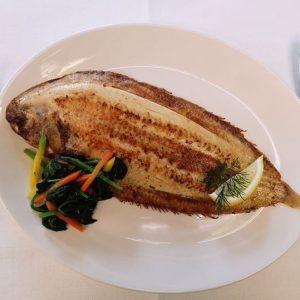 Hotel Restaurant Solskin - Vlissingen tong