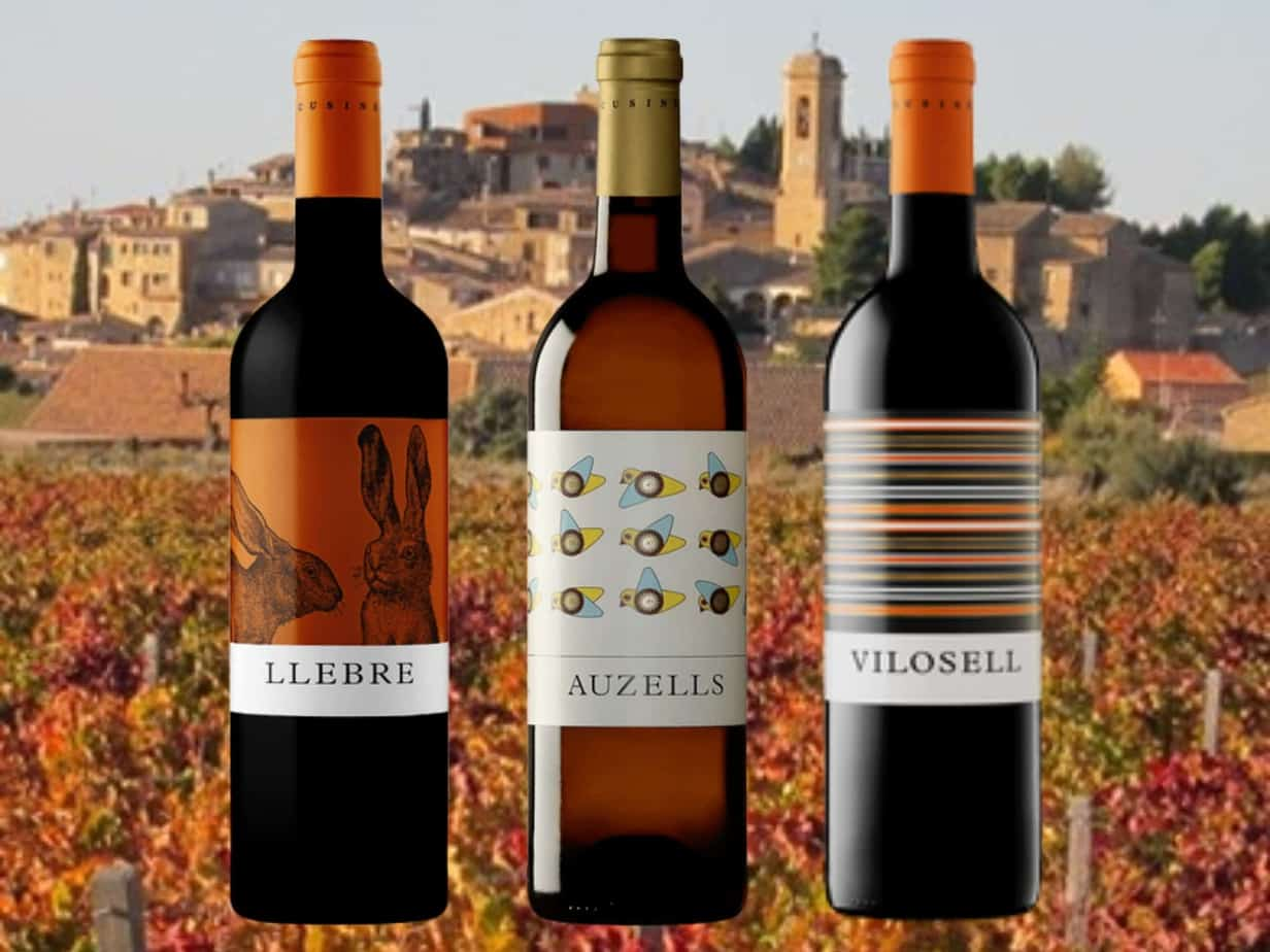 wijnen pakket van den bossche LLEBRE AUZELLES VILOSELL copy copy copy