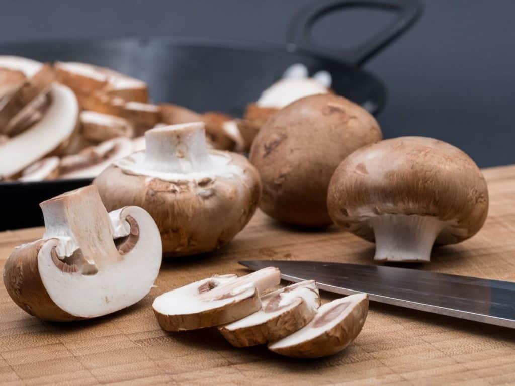 champignons paddenstoelen frank fol horeca webzine