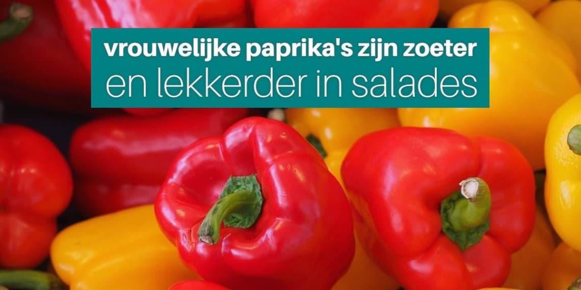 vrouwelijke paprika zoeter lekkerder horeca webzine