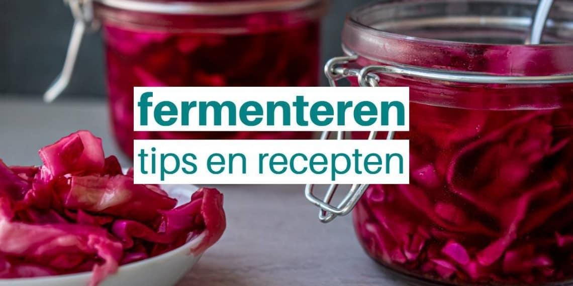 fermenteren fermentatie recepten tips franklin piens