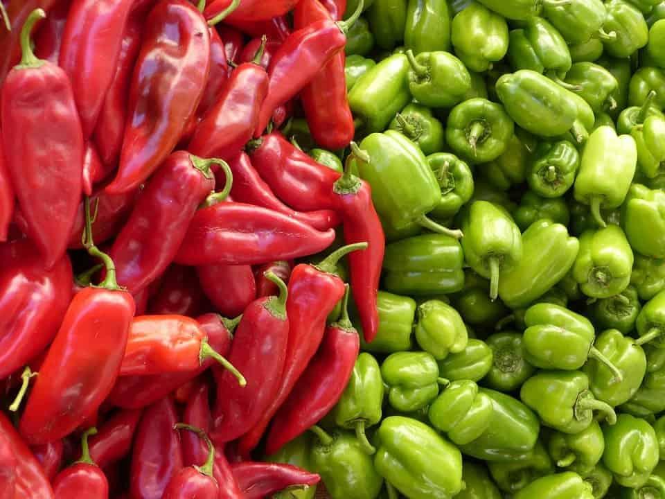 paprika-langwerpig-groente-van-het-jaar