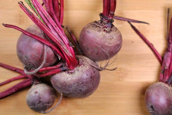 rode biet IYFV2021 frank fol groenten